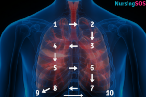 Percussion lung sounds placement (2)